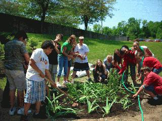 Students at Batchelor Middle School install a rain garden.